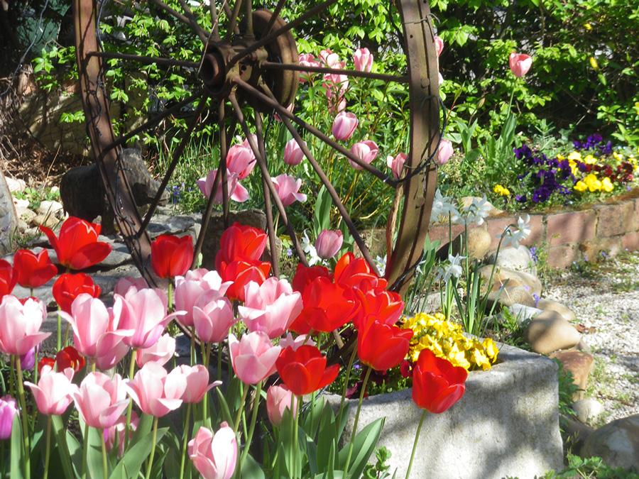 profiterez de notre jardin à Péronnas